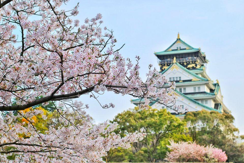 上海日语培训班n2多少钱(去日本留学要多少费用呢)