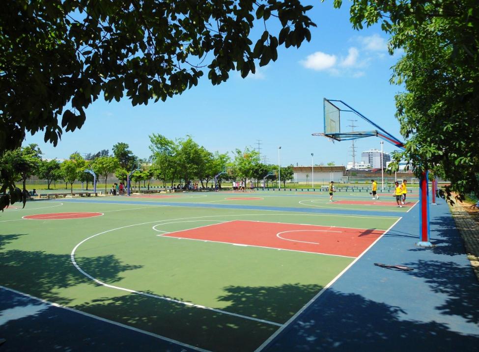 济南高新区十大青少年篮球培训排行榜(少儿篮球的好处有哪些)