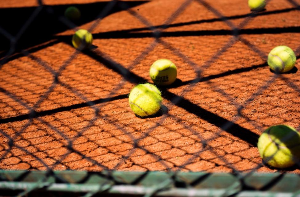 沈阳皇姑区学网球哪个比较好(少儿网球运动的好处)